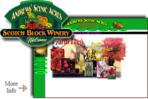 Andrew's Scenic Acres - With a beautiful picnic area, a large creative playground, a farm animal corral and free hay rides, a visit to Andrews Scenic Acres is a pleasurable family occasion!